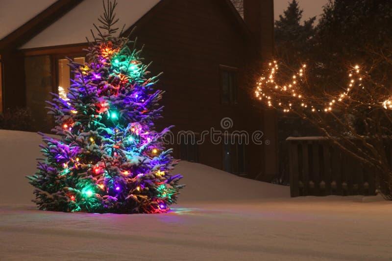 Utomhus- dekorerad julgran royaltyfri foto