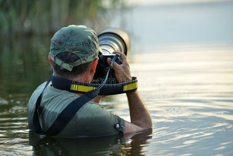 Utomhus- djurlivfotograf, anseende i vattnet royaltyfria bilder