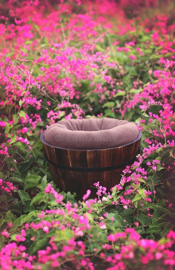 Utomhus- för Digital för blommafält stötta bakgrund arkivbild