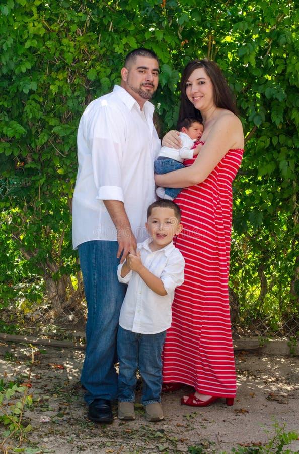Utomhus- familjståendemamma och hennes pojkar royaltyfri foto
