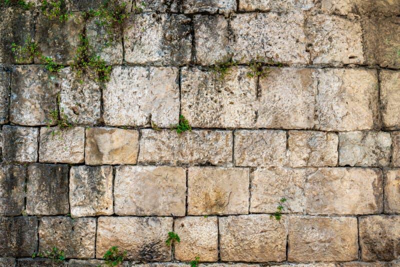 Utomhus- främre sikt av en gammal sliten riden ut sandstentegelstenvägg med rankaväxter arkivfoton