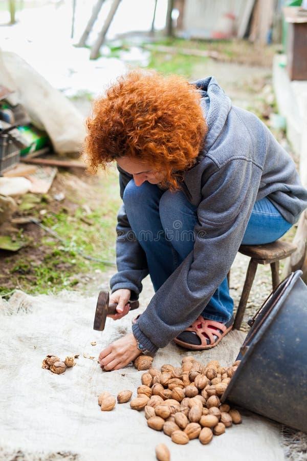 Utomhus- krossande valnötter för kvinna royaltyfri fotografi