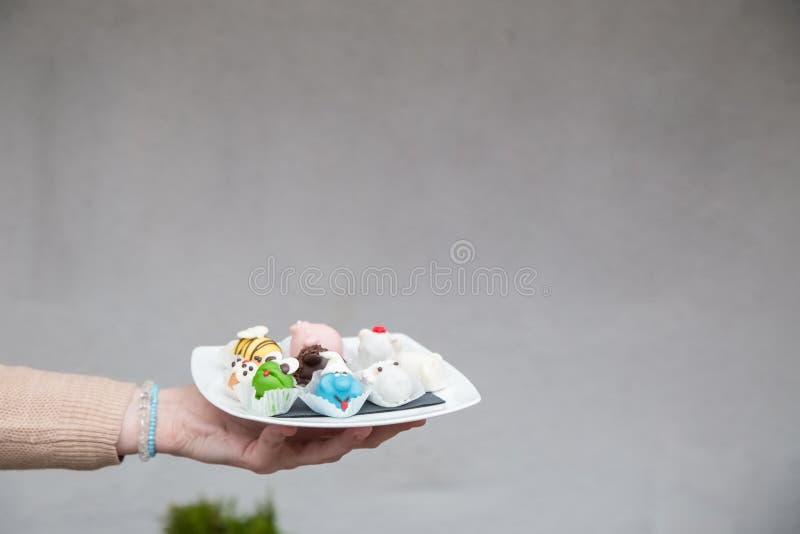 Utomhus- kvinnlig hand vem hållplatta med hemlagade kakor i arkivfoto