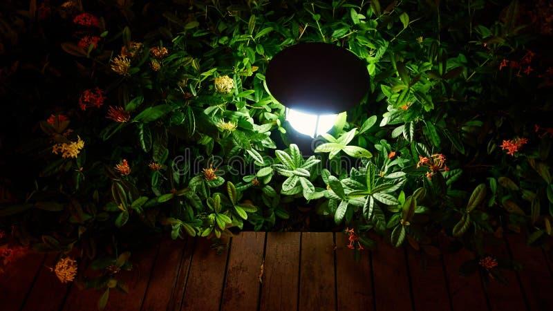 Utomhus- landskapbelysningnatt royaltyfri fotografi