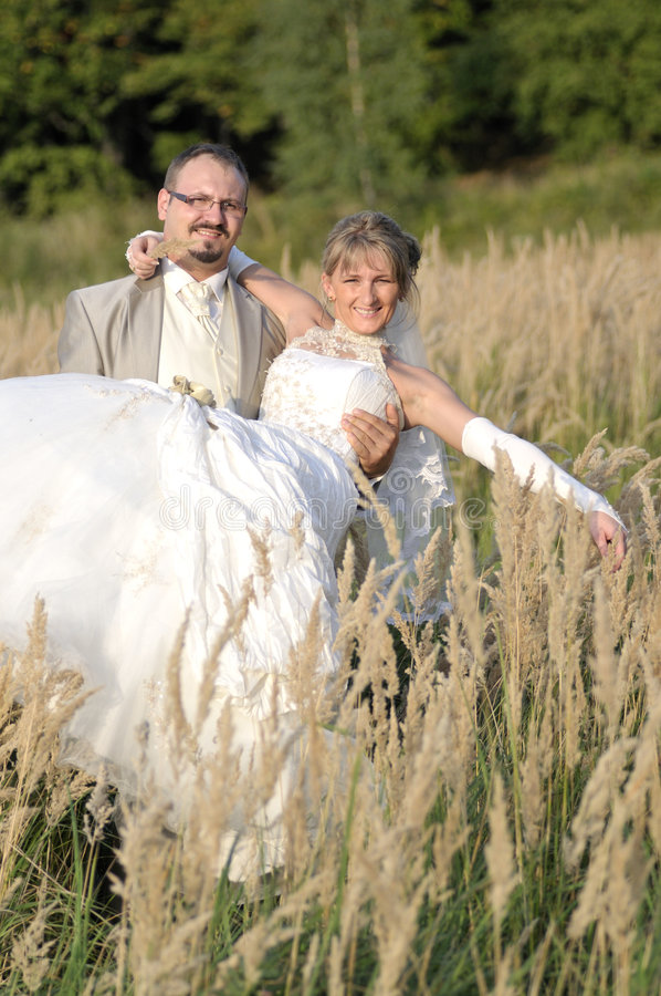 Utomhus- Landskapbröllop Arkivbilder