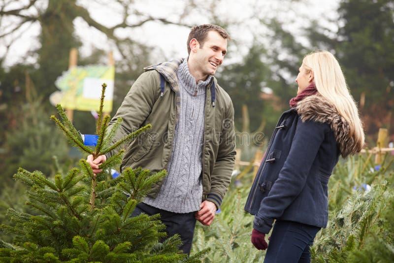 Utomhus- par som tillsammans väljer julgranen royaltyfri bild