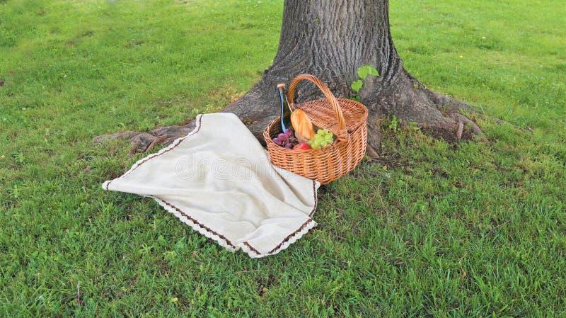 Utomhus- picknick p? picknickkorgen f?r solig dag med flaskan av r?tt vin royaltyfria foton