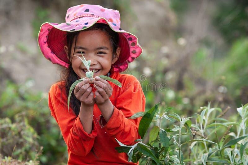 Utomhus stående av den vietnamesiska växten och att le för liten flickainnehav på kameran Härligt mjukt solljus ny utveckling Die royaltyfri foto