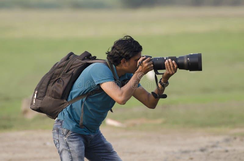 Utomhus- tagande foto för djurlivfotograf i utomhus- fotografering för bildbyråer