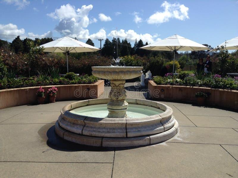 Utomhus- trädgårds- inställning för restaurang royaltyfri fotografi