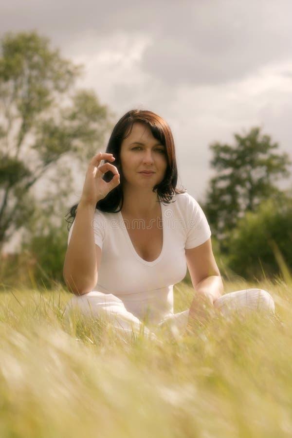 Download Utomhus yoga fotografering för bildbyråer. Bild av kvinnligt - 27205