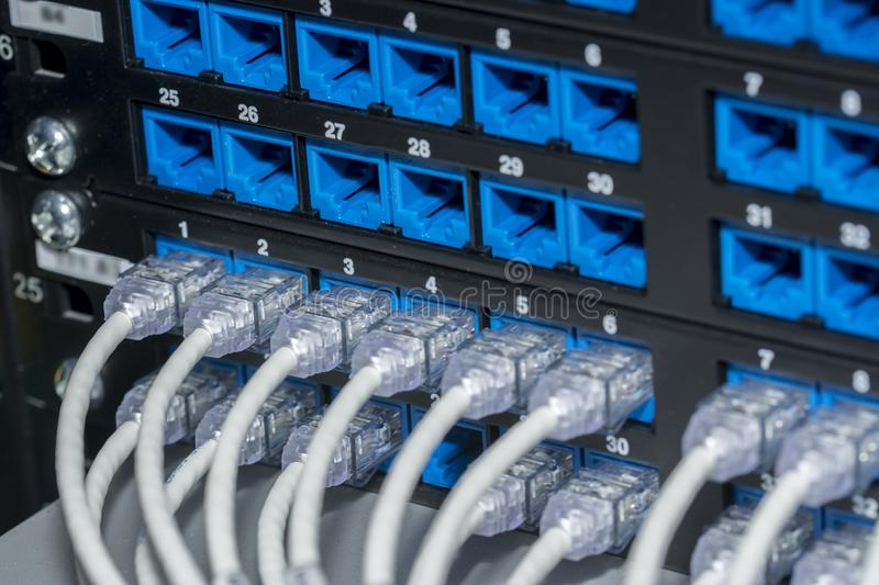 UTP - RJ45 cables connector panel stock photo
