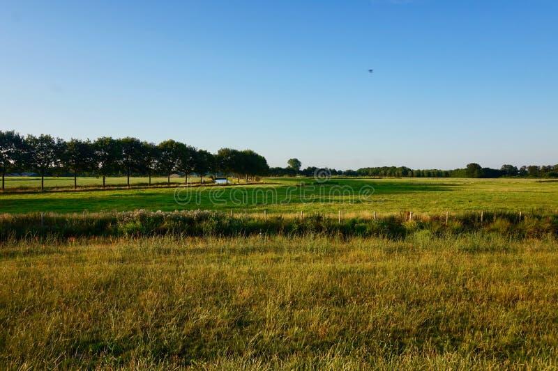 Landscape of Dutch grassy farmland at dusk. Utrecht Province, The Netherlands. Landscape of Dutch grassy farmland, with a blue sky, taken near dusk. Taken near stock photo