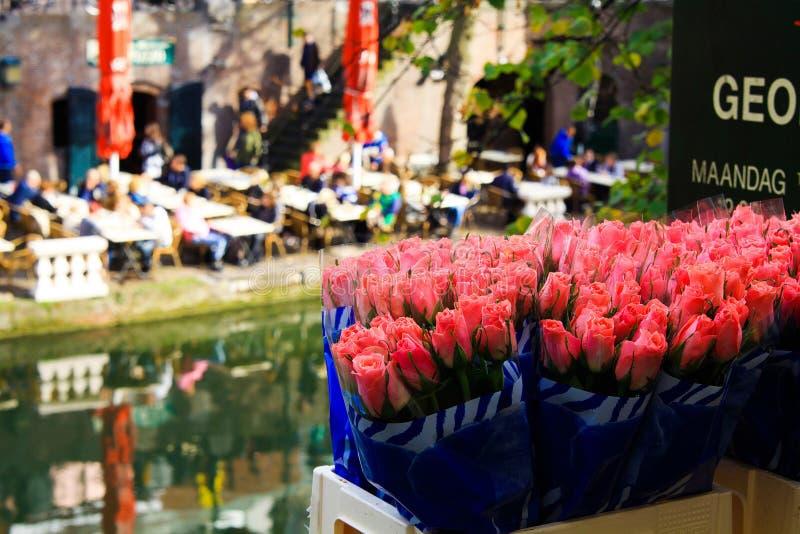 UTRECHT SOM ÄR NEDERLÄNDSK - OKTOBER 20 2018: Sikt på buketter av rosa tulpan nära vattenkanalen på blommamarknad arkivfoton