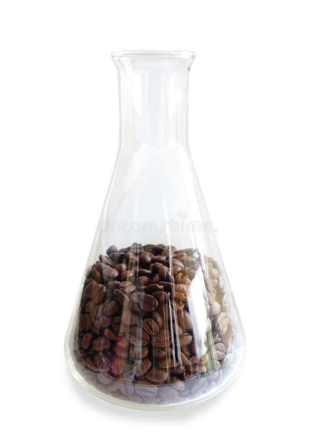Utredning av kaffe i laboratoriumet royaltyfria foton