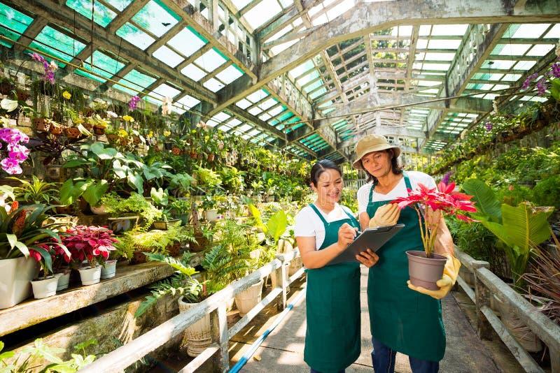 Utrzymanie rejestry kwiaty fotografia royalty free