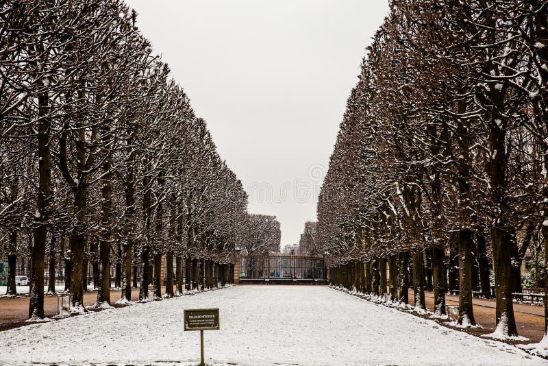 Utrzymanie z trawa znaka przy Luksemburg pałac ogródem w marznięcie zimy dniu obraz royalty free