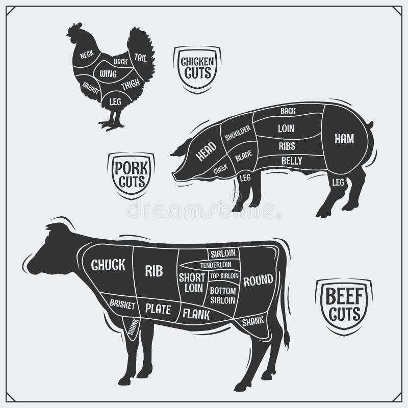 Uts mięso Kurczak, wieprzowina i wołowina, ilustracyjny lelui czerwieni stylu rocznik royalty ilustracja