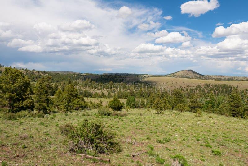 Utsikt för högt berg fotografering för bildbyråer