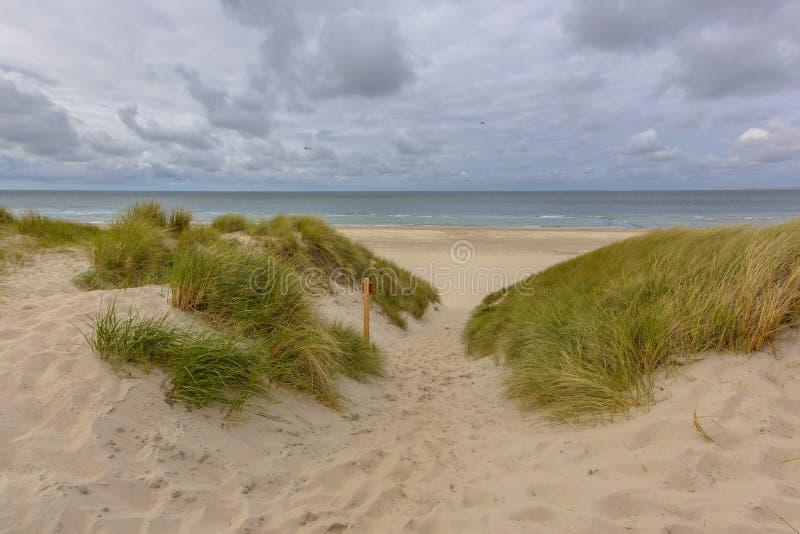 Utsikt för stranddynhav royaltyfri fotografi