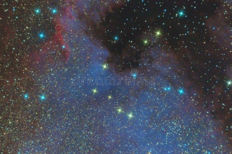 Utsläppnebulosan av Nordamerika i konstellationsvanen och är en region av joniserade väten Foto av nebulosan och stjärnan f arkivfoton