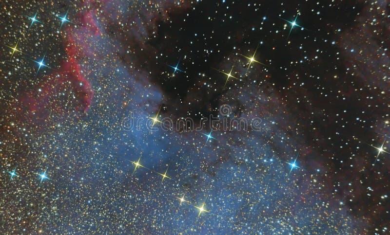 Utsläppnebulosan av Nordamerika i konstellationsvanen och är en region av joniserade väten Foto av nebulosan och stjärnan f royaltyfria bilder