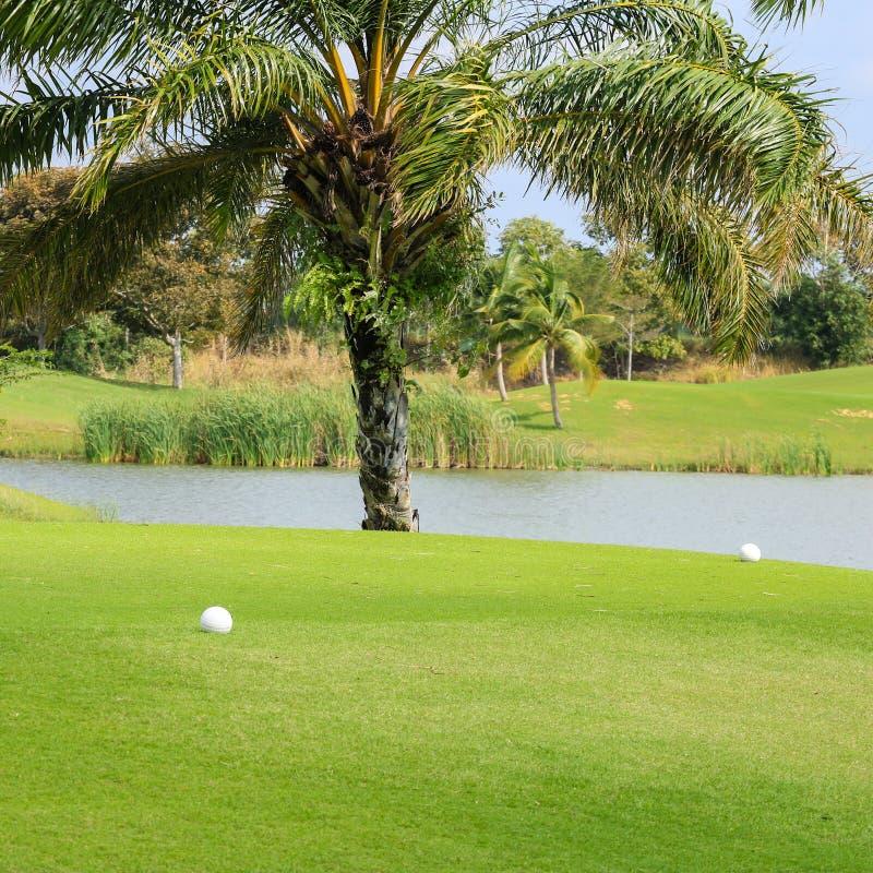 Utslagsplatsask i golfbanan arkivbild