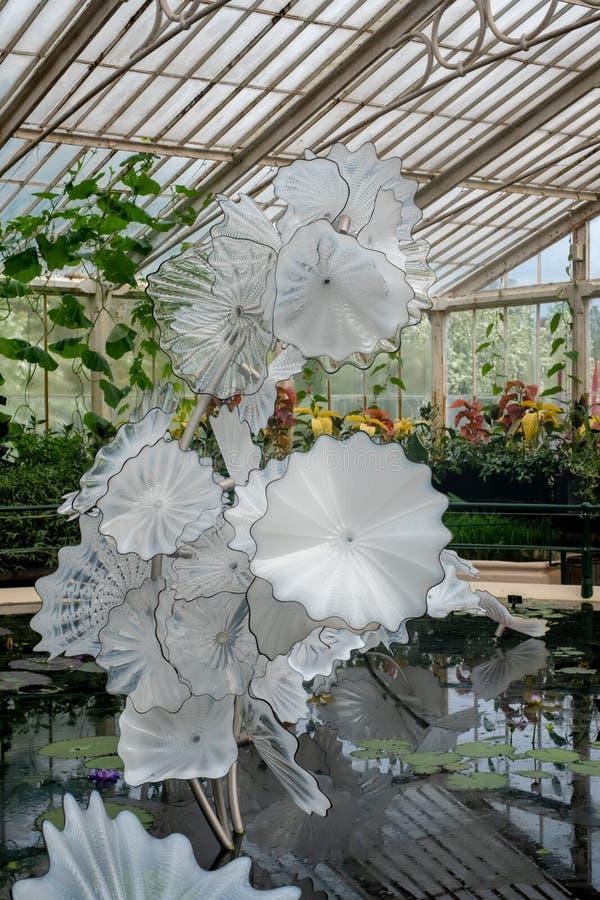 Utställning av exponeringsglaskonstnären Dale Chihuly i det Waterlily huset på Kew trädgårdar, Richmond, London, UK royaltyfri bild