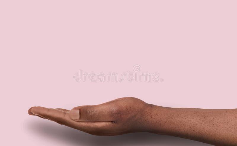 Utsträckt manlig hand över rosa bakgrund royaltyfria foton