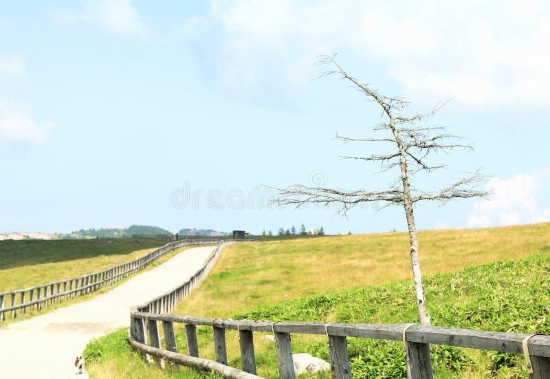 Utsukushigahara Kegan στοκ εικόνες με δικαίωμα ελεύθερης χρήσης