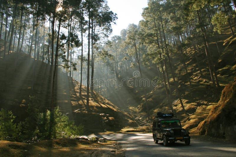 uttaranchal山的路 免版税库存照片