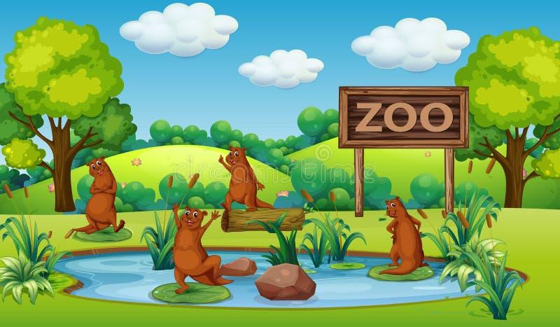 Utter på zoo royaltyfri illustrationer