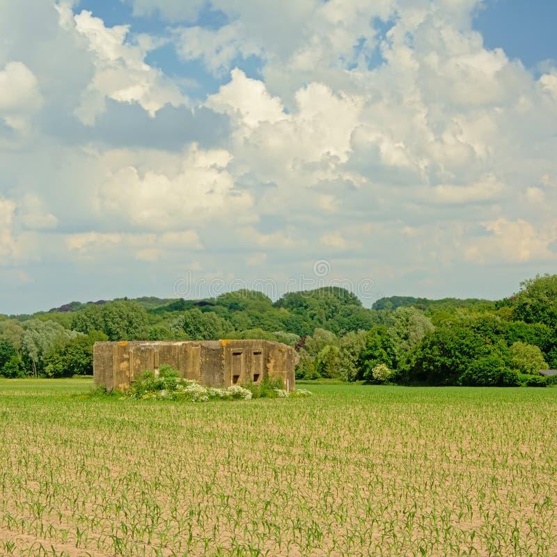 Uttrycka bunker för krig ett i ett fält i den flemish bygden fotografering för bildbyråer