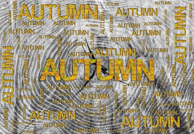 Uttrycka hösten som göras av det isolerade sidor och ordet på träbakgrund royaltyfria foton