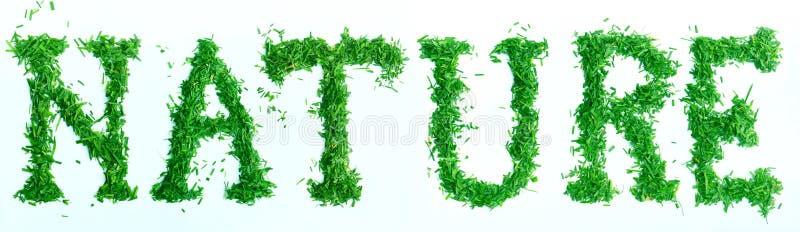 Uttrycka NATURLIGT som göras av grönt gräs på vit bakgrund isolerad begreppsjord sparar white arkivbilder