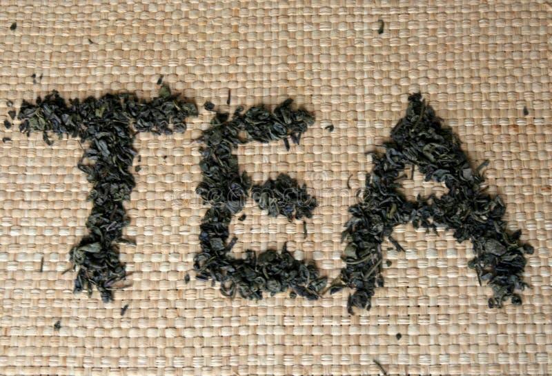 Uttrycka tea som göras från grön tea royaltyfri fotografi