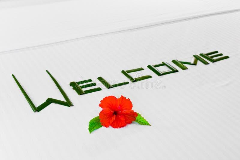 Uttrycka välkomnandet och blomman på säng i hotell royaltyfria bilder