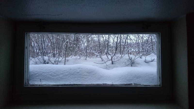 Utvändigt källarefönster för vinter royaltyfri foto
