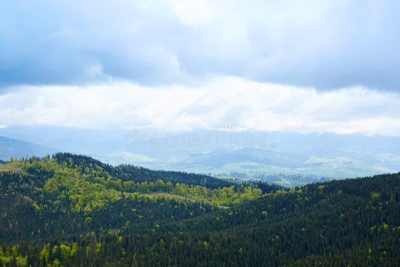 Utvändigt landskap av den storartade bergsikten Där molnig himmel, kullar är full av evergreen sörjer träd, kallt molnigt väder, arkivbilder