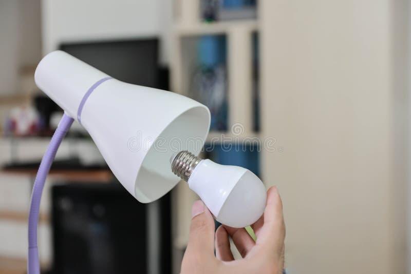 Utvald LEDD kula - kulan som ska användas med den elektriska lampan royaltyfri foto