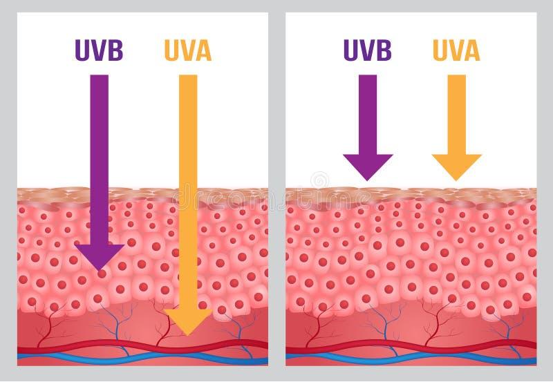 A UV, uv e proteção uv de b ilustração do vetor