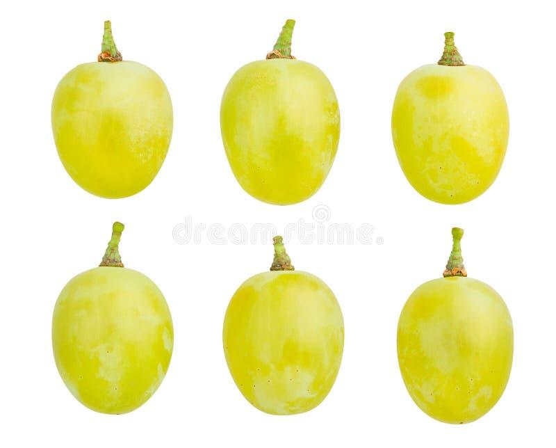 Uva bianca immagini stock libere da diritti