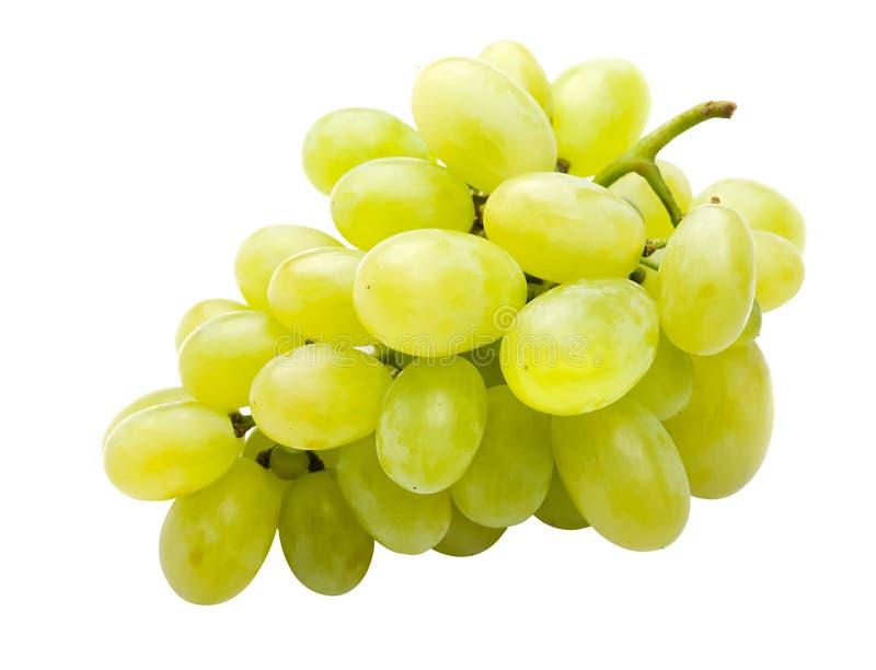 Uva bianca completamente isolata immagine stock