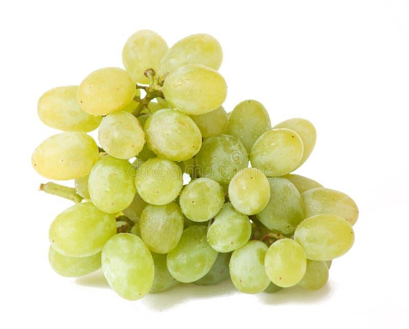 Uva bianca con le goccioline immagine stock