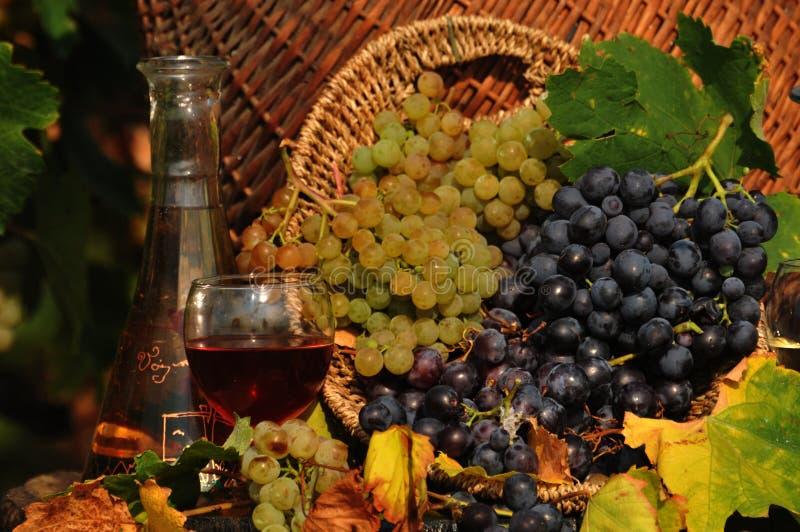 Uva bianca e rossa in un barilotto di vino fotografia stock libera da diritti