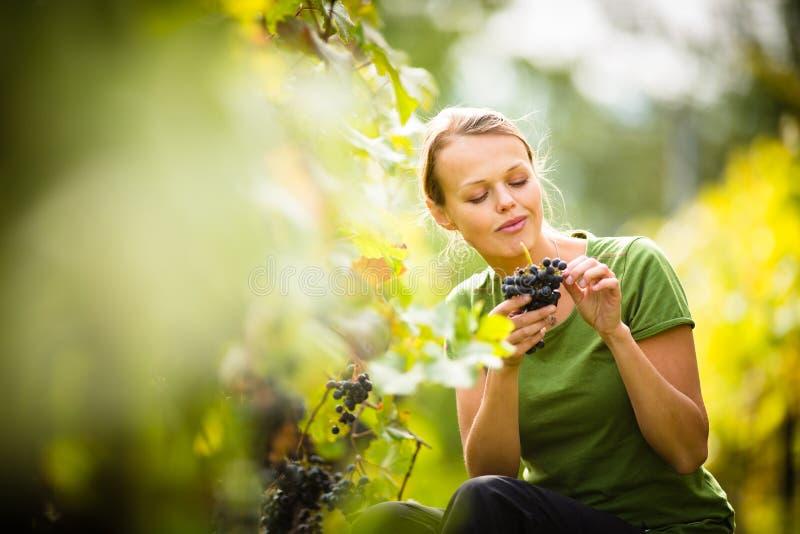 Uva da colheita da mulher fotos de stock