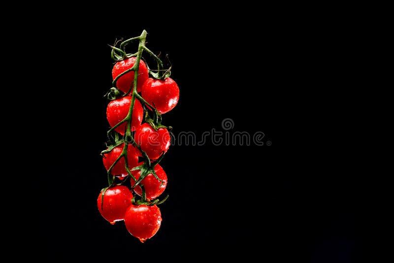 Uva di levitare bagnato dei pomodori ciliegia immagine stock
