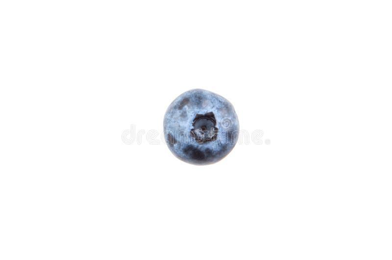 Uva-do-monte isolada no fundo branco foto de stock