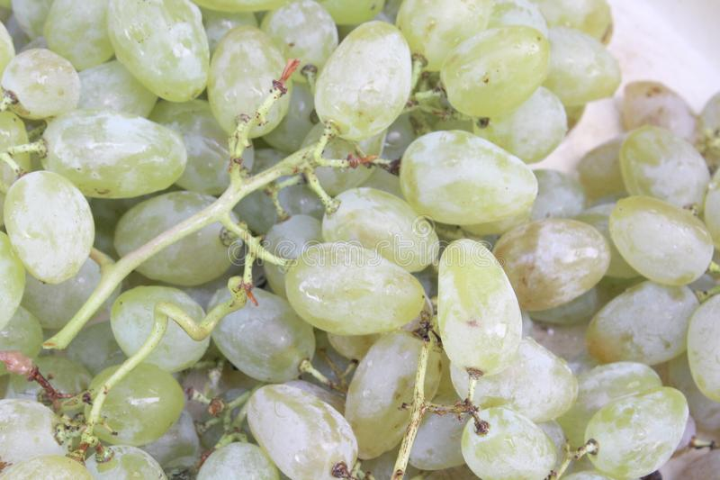 uva dulce blanca para el vino imagen de archivo libre de regalías