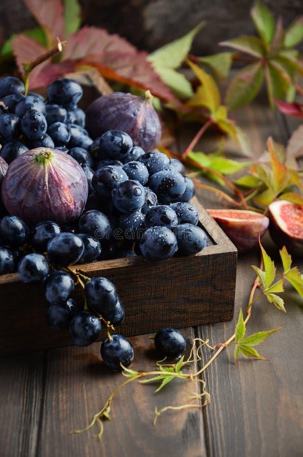 Uva e fichi neri freschi in vassoio di legno scuro sulla Tabella di legno fotografia stock